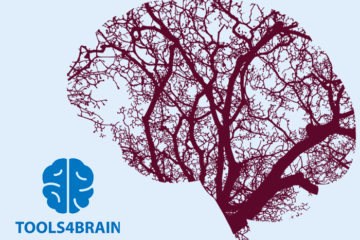 TOOLS4BRAIN (led by NISA) has been funded under the ERASMUS+ programme KA2
